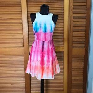 Sparkle & Fade Dress with back slit